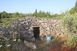Berba lavande na polju Breslavica vlasnika Bartola Dulčića, selo Rudina, otok Hvar, 6.7.2016.: Polje Breslavica, trim.