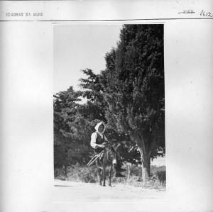 Žena na magarcu.