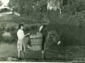 Opskrba vodom iz seoske lokve