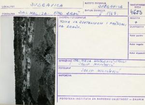 Narodne pripovijetke i predaje otoka Brača, 1969.: Njiva sa djetelinom i pašnjaci na Braču.