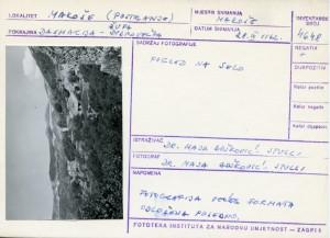 Narodne pripovijetke, predaje i pjesme iz Dubrovačke župe i Rijeke dubrovačke, 1962.: Pogled na selo.