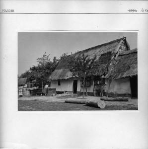 Kuća sa košnicama.