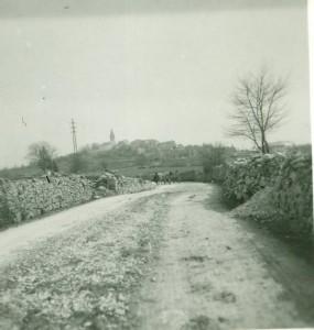 Žminj - panorama