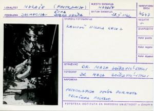 Narodne pripovijetke, predaje i pjesme iz Dubrovačke župe i Rijeke dubrovačke, 1962.: Kazivač Nikola Kelez.