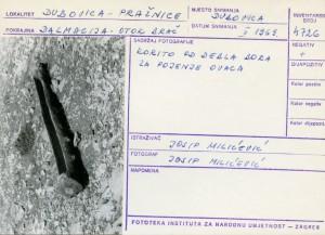 Etnološka i folklorna građa otoka Brača, 1969.: Korito od debla bora za pojenje ovaca.