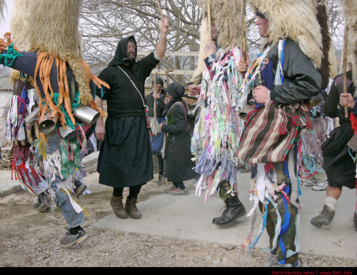 Didi iz Udovčića, 7. veljače 2005.