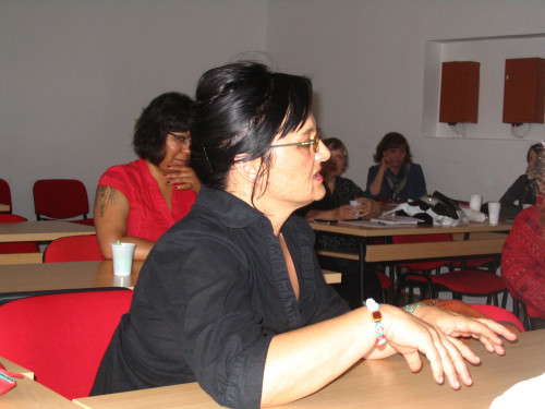Feminisms in a Transnational Perspective 2011: Women Narrating Their Lives and Actions. Ines Prica