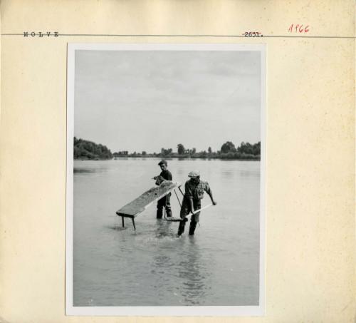 Etnološko istraživanje u Molvama, 1958; Ispiranje zlata. Bacanje šljunka na dasku.