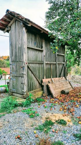 Kuružnjak kraj stare hiže, Belec